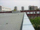 0004-ploche-strechy